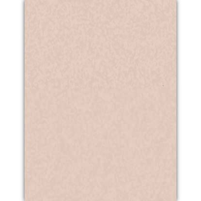 Picture of Shell Pink 65lb 8.5X11 Vellum Astroparche Cover - 2000 Sheets